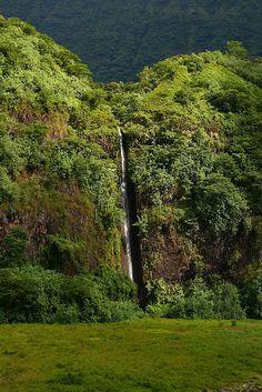 Waterfall, Central Tahiti