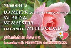 Mamá eres tú  LO MEJOR que me ha dado la vida, MI REINA, MI MAESTRA y la fuente de MI FELICIDAD. ¡Felicidades te deseo a ti, la madre más HERMOSA de MI MUNDO!