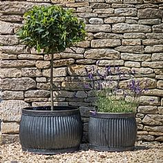 Provencal Planters - Curved Sides