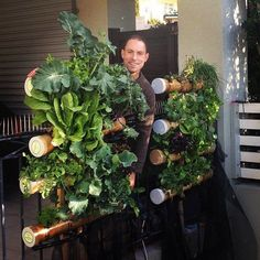Vertical Gardening Systems - Bamboo Balcony Gardens | Vertical Hydroponic Growing Solutions