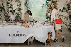 Mulberry SS 2014 campaign lensed by Tim Walker l #fashion #dogs #englishteaparty