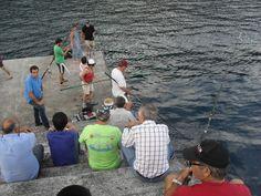 PORTO DA CALHETA: Pesca Lúdica