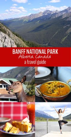 A travel guide to the Canadian Rockies in Banff National Park - Alberta, Canada. Tips on where to stay, go and eat in Banff National Park. Alberta Canada, Banff Canada, Banff Alberta, British Columbia, Alaska, Canadian Travel, Canadian Rockies, Vancouver, Rocky Mountain National