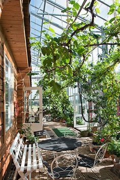 Swedish house enclosed in a greenhouse frame - Gardening Love Greenhouse Frame, Greenhouse Gardening, Greenhouse House, Greenhouse Interiors, Indoor Greenhouse, Orangerie Extension, Dream Garden, Home And Garden, Earthship Home