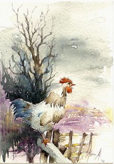 Monica Mililli WATERCOLOR Rooster Painting, Rooster Art, Chicken Painting, Chicken Art, Art Watercolor, Watercolor Animals, Gravure Photo, Guache, Galo