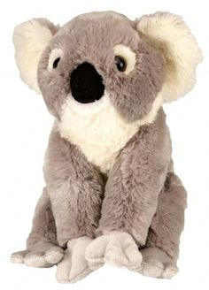Cuddlekins Koala (12-inch) at theBIGzoo.com, a toy store featuring 3,000+ stuffed animals.