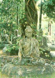 Buddha image028