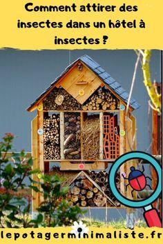 Installer un hôtel à insectes, c'est bien. Attirer la faune sauvage c'est mieux. Dans cet article, vous allez découvrir comment repeupler votre terrasse, votre balcon ou votre petit jardin de ville. Clock, Outdoor Decor, Wall, Gardens, Insect Hotel, Cascading Flowers, Small City Garden, Urban Farming, Watch