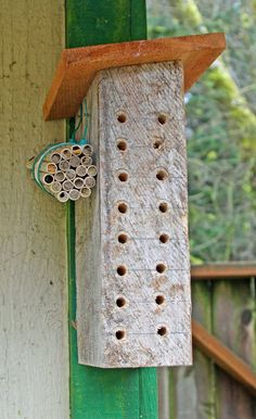 Has directions for how to build a bee block /Pix shows Nest bee box with ready-to-hatch straws nearby. Small Flower Pots, Bee Boxes, Spring Projects, Nesting Boxes, Garden Trellis, Bees Knees, Bee Keeping, Summer Fun, Nativity