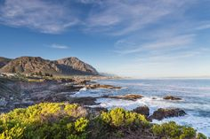 The tranquil combination of sea and fynbos is what first drew people to Hermanus' striking shoreline. Years later despite development it still exudes a sense of serenity. Photo by Tyson Jopson. Provinces Of South Africa, Seaside Towns, Fishing Villages, Whale Watching, Pictures To Paint, Day Trips, Travel Destinations, Places To Visit, Serenity