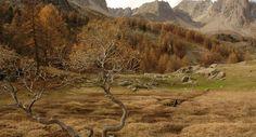 Paysage automnal dans la vallée de la Clarée, dans le département des Hautes-Alpes, en région Provence-Alpes-Côte-d'Azur, en France