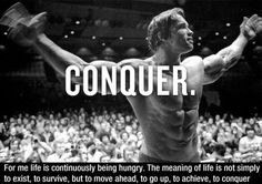Greatest Arnold Schwarzenegger Quotes (11 Photos)