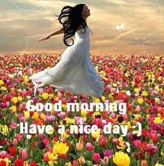 Good Sunday Morning Friends