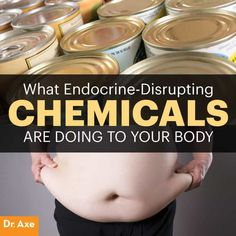 """Toxic Food - Endocrine disruptors are often referred to as estrogen-mimickers or xenoestrogens. They """"mimic"""" the effects of true estrogen, linking to receptor sites. Dr Josh Axe, Dr Axe, Endocrine Disruptors, Endocrine System, Reproductive System, Health And Wellness, Health And Beauty, Health Tips, Holistic Nutrition"""