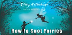 School Of Witchcraft How to Spot Fairies 12 Signs traditionally associated with the presence of Fairies nearby