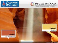 SW 6883 - Raucous Orange | SW 6689 - Overjoy