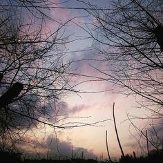 夕焼け寒かったけど穏やか #寒かった  #空 #夕空 #夕焼け  #spring #sky #evening #sunset #skyline #sunnyday #japan #landscape #instadaily #instaoftheday #picoftheday #photooftheday