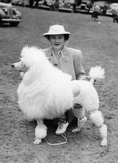 Hayes Blake Hoyt (Mrs. Sherman Hoyt) of Blakeen Kennels and her standard Poodle Ch. Blakeen Jung Frau, pictured in 1938. Jung Frau was winner of the Non-sporting Group at Westminster in 1939, and in 1940 she was Best in Show over 4,027 entries at the prestigious Morris & Essex Kennel Club show held annually at Giralda, Mrs. Geraldine Rockefeller Dodge's vast estate in Madison, New Jersey. - AKC Gazette