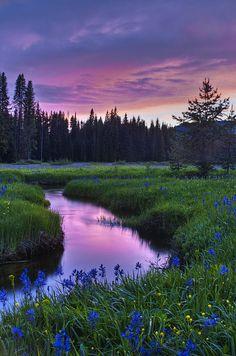 Packer Meadow Sunset by Heidi Walker**