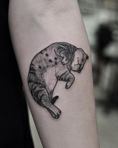 Little cat for Tania, thankyou! For bookings email chrisjonestattooer@gmail.com…