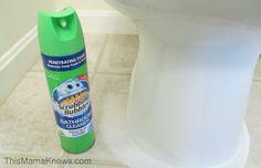 #BehindClosedDoors with Scrubbing Bubbles #MC #sponsored http://thismamaknows.com/2014/12/behindcloseddoors-scrubbing-bubbles.html