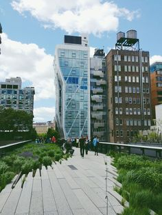 flores del sol: walking the high line, nyc