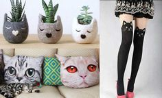 17 accesorios que todos los amantes de los gatos deberían tener