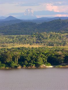 Llanos y Tepuy, Vichada