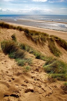Blackpool Beach - beautiful grasses