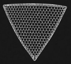 Geometry and Pattern in Nature Exploring the shapes of diatom frustules with Johan Gielis' Superformula. Ernst Haeckel, Geometric Nature, Geometric Shapes, Patterns In Nature, Textures Patterns, Microscopic Photography, Micro Photography, Microscopic Images, Natural Structures