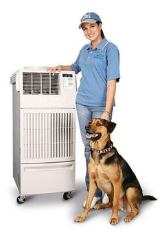 """Spot Coolers products #breeze #air #conditioning #palm #desert http://hosting.nef2.com/spot-coolers-products-breeze-air-conditioning-palm-desert/  # Spot Cooling Temporary Cooling Since 1985, Spot Coolers has provided temporary and emergency commercial air conditioning units, systems and services for people, equipment, buildings (offices) and companies throughout the nation. We provide the best """"on the spot"""" air conditioning solutions, meeting the cooling and heating needs of our customers…"""
