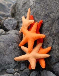 Cute Felt Starfish, Free Pattern! Found at NaturalKidsTeam.Com. These would be cute in an ocean themed sensory box.