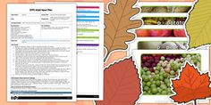 Harvest Initial Sounds Display EYFS Adult Input Plan and Resource Pack