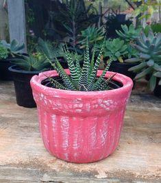 Vaso de barro Pátina
