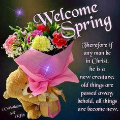 Welcome Spring. Happy March, Happy Spring, Spring Time, Love Scriptures, Spring Quotes, King James Bible Verses, Spring Pictures, Morning Blessings, Welcome Spring