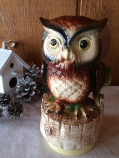 Vintage Woodland Owl Music Box What The World by HenNChicksVintage
