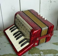I learned on this size accordion before graduating to the larger one.
