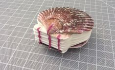 DIY Seashell Book – Craft projects for every fan! Dremel Drill, Small Scissors, Handmade Books, Book Crafts, Sea Shells, Craft Projects, Great Gifts, Diy, Food