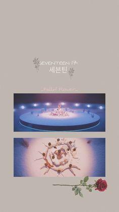 Harry Styles Wallpaper, More Wallpaper, Flower Wallpaper, Wallpaper Backgrounds, Iphone Wallpaper, Kpop, Joshua Seventeen, Twitter, Mingyu Seventeen