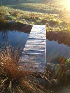Frosty Winters Morning in Central Hawke's Bay, New Zealand