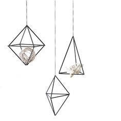 Set of 3 || Himmeli Ornaments | Air Plant Hanger | Geometric Hanging... ($49) ❤ liked on Polyvore featuring home, home decor, decor, art, furniture, minimalist home decor, mobile home decor, geometric home decor and black home decor