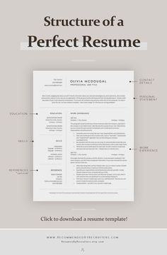 Basic Resume Examples, Professional Resume Examples, Professional Tools, Professional Development, Cv Tips, Resume Tips, Job Resume, Modern Resume Template, Resume Template Free