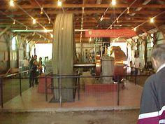 WMSTR Rollag Minnesota Show Generators, Minnesota, Westerns, Big