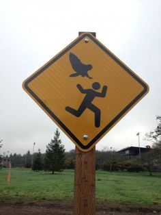 The City of Salem in Oregon has posted unusual signs near a park warning people that an angry owl could swoop down on them at any moment. At least 4 people have reported getting scratched by the unusually aggressive owl over the past couple months near Bush's Pasture Park & Soap Box Derby hill.