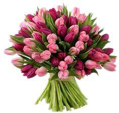 Тюльпаны микс 55 шт. Букет из тюльпанов. (Голландия)