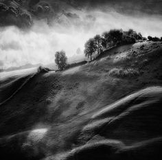 Morning Mist by Sebastian Prioteasa on Art Limited