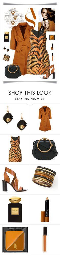 """Paule Ka Tiger Print Dress Look"" by romaboots-1 ❤ liked on Polyvore featuring Ashley Pittman, Paule Ka, Chloé, Giorgio Armani, Iman, Black Radiance and VMV Hypoallergenics"