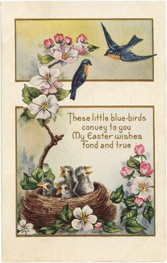 Sweet Easter Bluebirds Image! - The Graphics Fairy