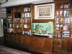 looking to make a bookshelf tank, expect many more similar pictures :) Ladder Bookcase, Bookshelves, Cool Rooms, Built Ins, Fish Tank, Liquor Cabinet, Living Room, Storage, House
