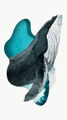 Watercolor painted humpback whale transparent png premium image by rawpixel com / Niwat ในปี 2020 วาฬ ภาพวาดดิจิตัล ภาพประกอบ
